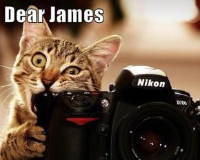 Dear James: CAT MEMEEDITION