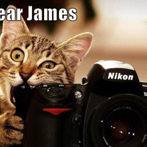 Dear James: CAT MEME EDITION